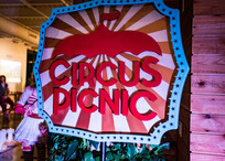 CIRCUS PICNIC Spectacular, Entertainment, Art Expression, Night of Performance, Gala Night, Gala Event, Experience Magical and Fantasy, Dream Party Idea, Circus Party Concept, Circus Themed Corporate Party, Fancy Social Event, AustinTexas, Houston Texas, Dallas Texas, San Antonio Texas