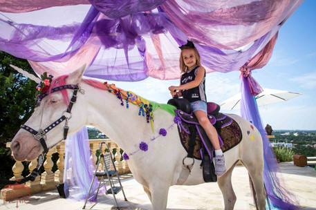 The Unicorn Experience, CIRCUS PICNIC Magical Mermaid Theme Corporate Party Ideas, Texas