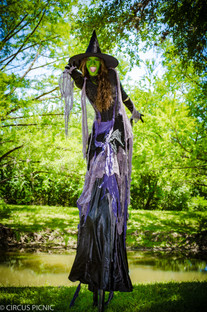 The Wicked Witch of the West is on stilts at a CIRCUS PICNIC party.