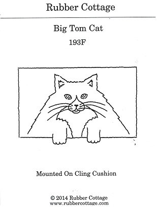 BIG TOM CAT
