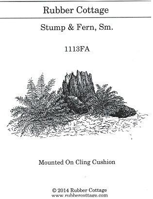 STUMP & FERN SM