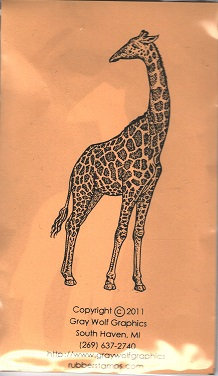 RETICULATED GIRAFFE   ANL1094