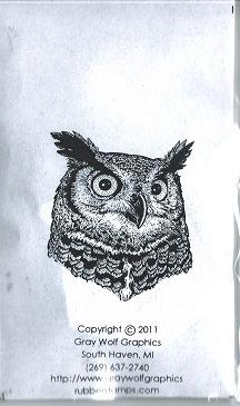 OWL PORTRAIT  BIR5021