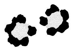 Leopard Spots ANL1074