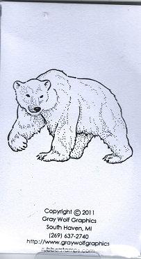 POLAR BEAR  ANL1104