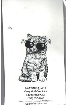 COOL KITTY  ANL1051