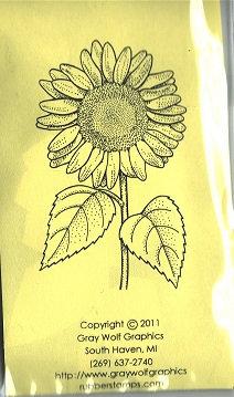 SUNFLOWER   FL3019