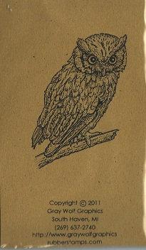 BIR5035 SCREECH OWL