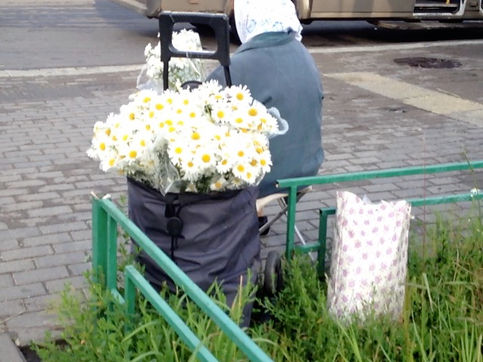 Video diary. Moscow city walks. Walking in Moscow. A woman selling flowers in the streets.