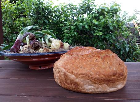 Home made bread & home grown organic veg