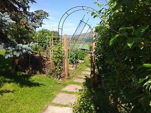 The vegetable garden at Crackpot cottage