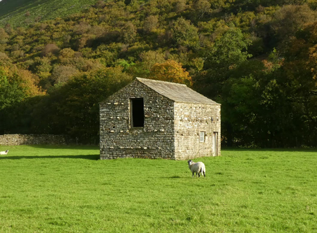 Our Beautiful Swaledale