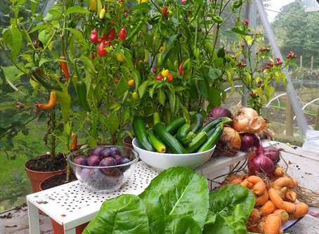 Harvest time at Crackpot Cottage