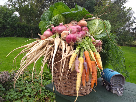 A cracking harvest at Crackpot Cottage!