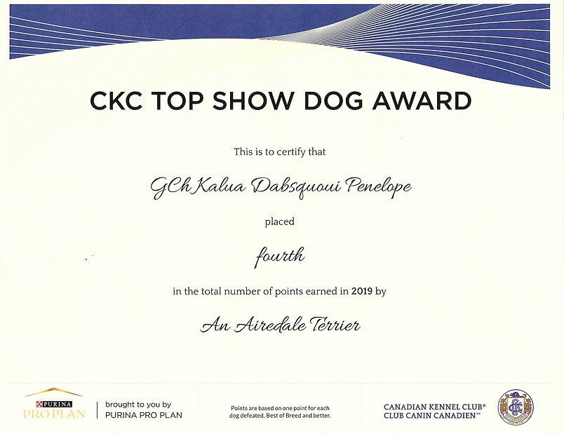Top Dog Pénélope 2019.jpeg