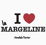 Airedale Terrier la Margeline I love la