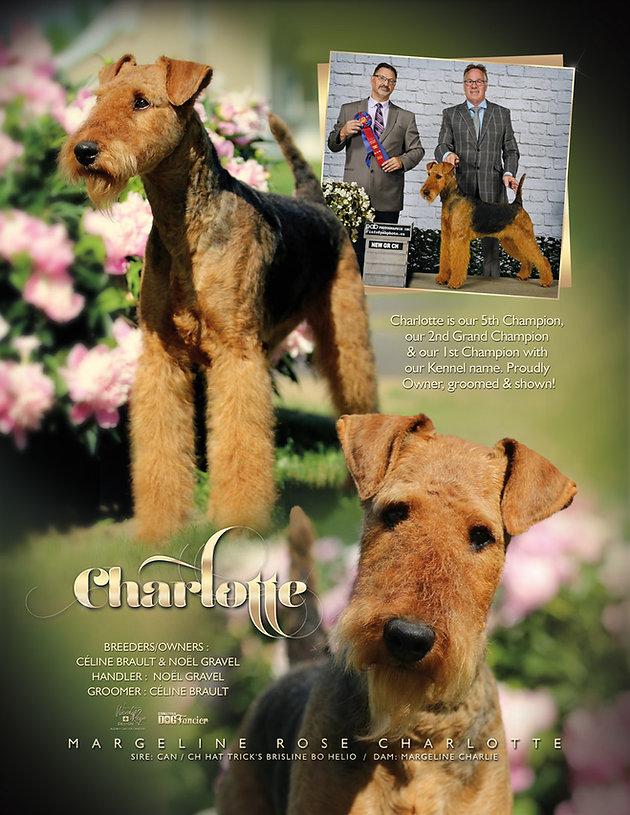 Charlotte_publicité.jpg