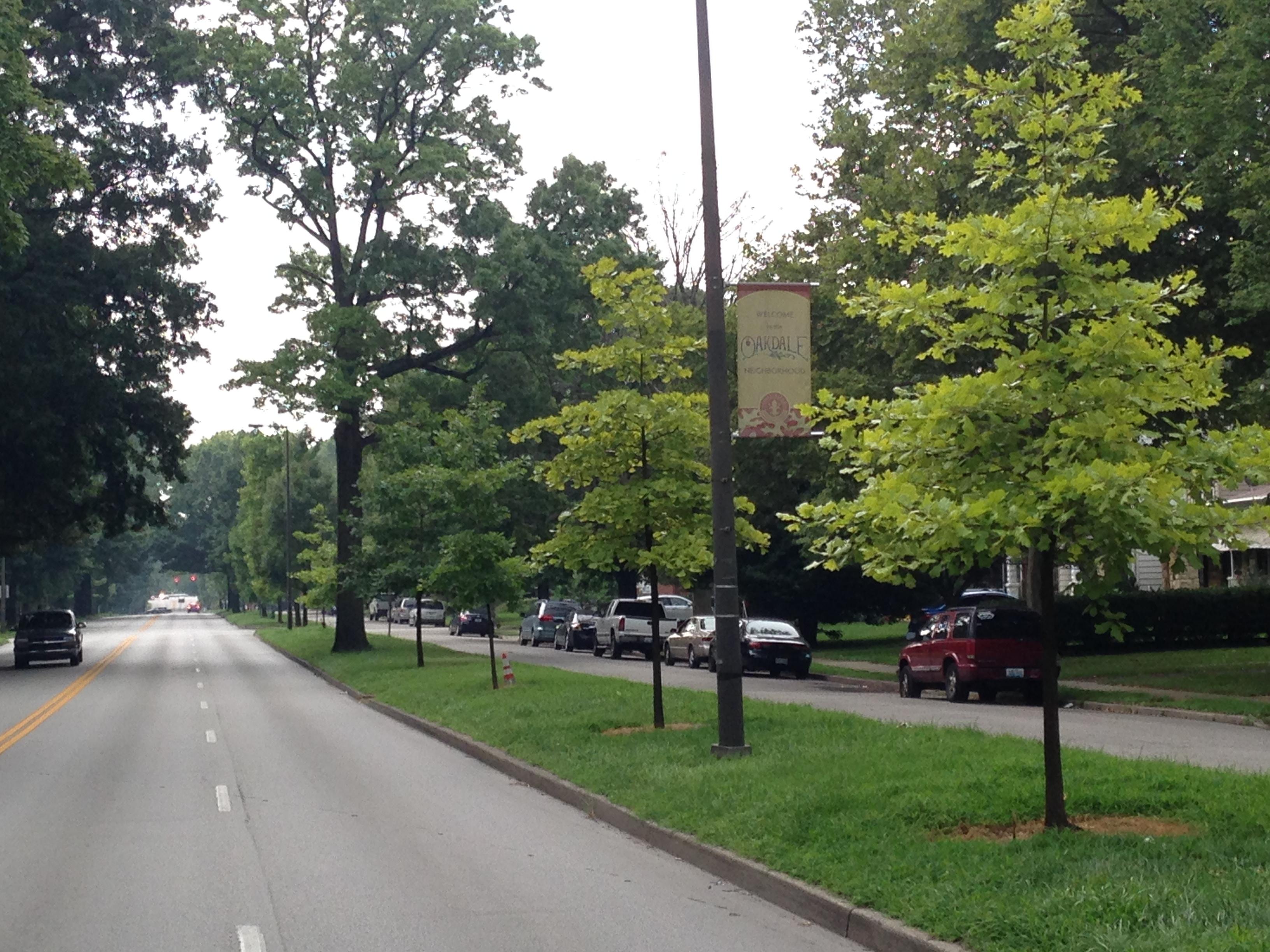Oakdale Neighborhood Plan - Draft
