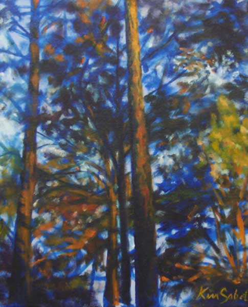 Southern Pines at Dusk