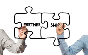 partner search, alliance, partnering