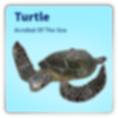 Turtle_link.png