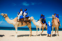 paseo en camello tlaloc tours