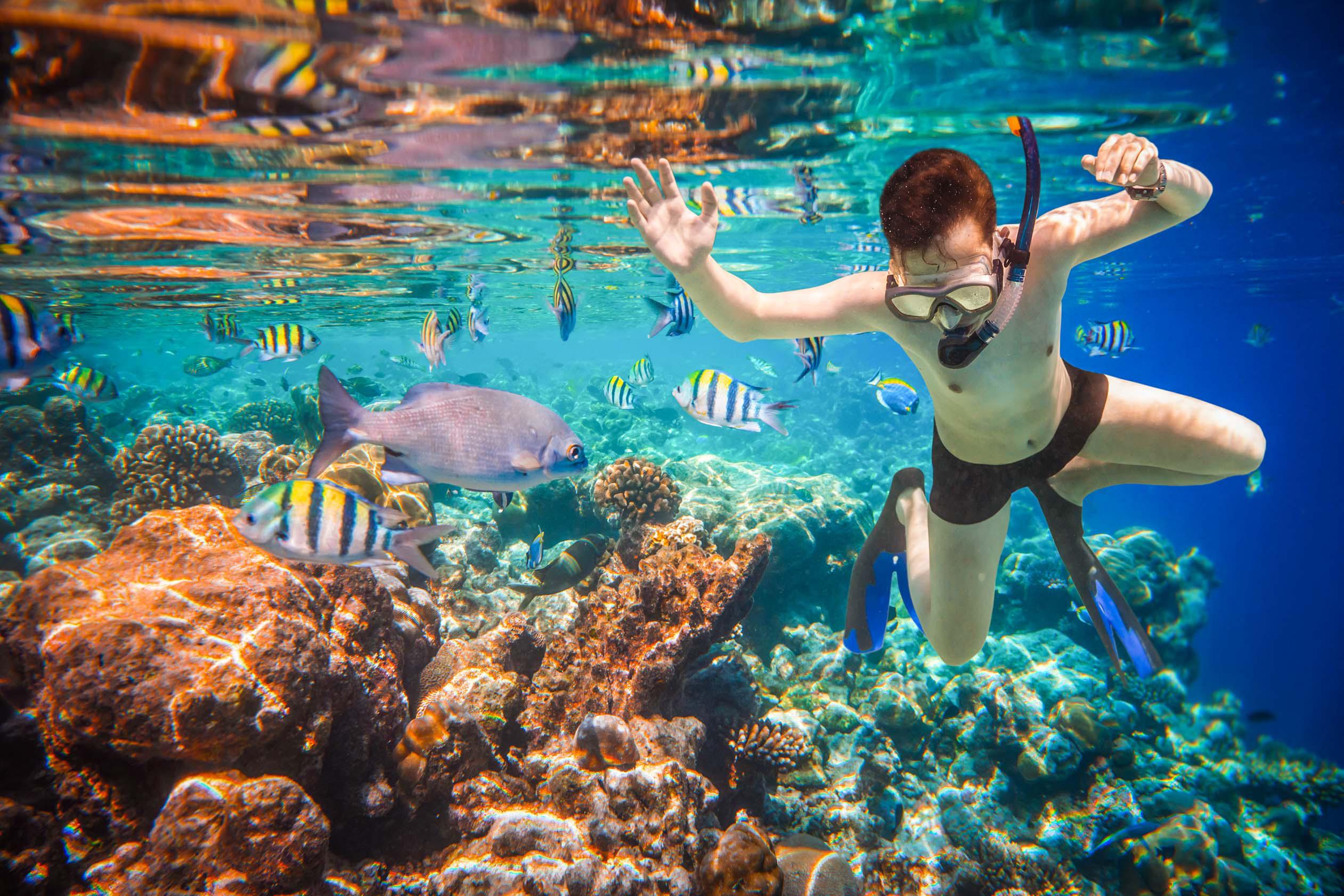 Snorkel Tlaloc Tours