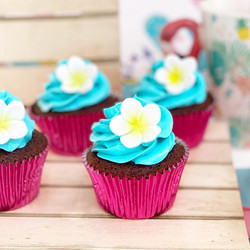 Cupcakes Hawaii