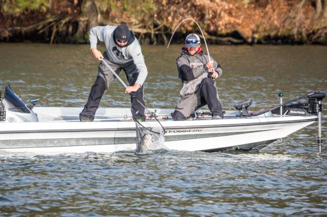 Guided Bass Fishing Pickwick Lake