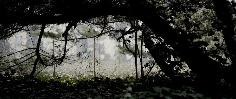 Trailer.00_08_06_16.Still060.jpg