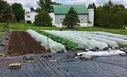 Ell Farm 1.jpg
