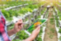 Smart agriculture , precision farming co