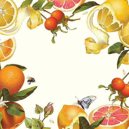 5 x Paper Placemats Citrus Burst Gloss 30pk