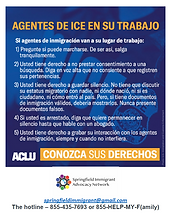 Know Your Rights (spanish) Pdf