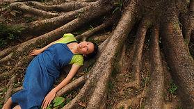 stuck in tree.jpg