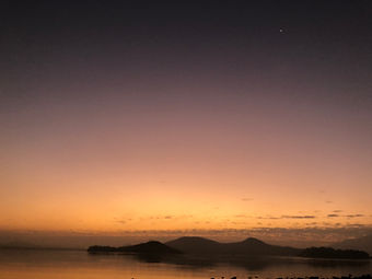paloma dawn.JPG