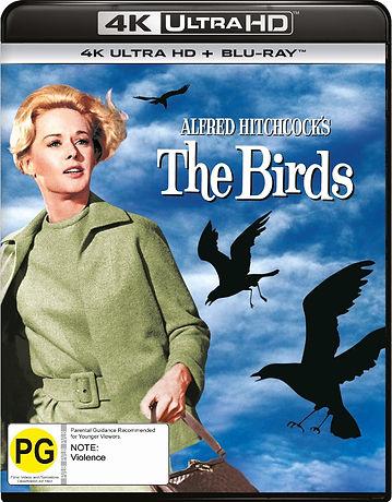 the birds.jpeg