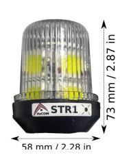 STR1_3.jpg