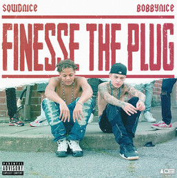 Squidnice x Bobbynice - Finesse The Plug   Concept Cover Artwork