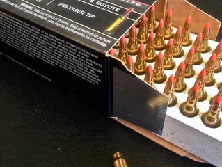 The .17 Winchester Super Mag. UPDATED