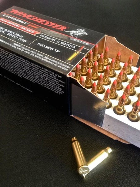 The  17 Winchester Super Mag  UPDATED