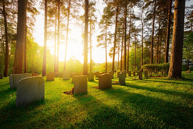 Wooded cemetery with tall trees and a few dozen headstones in the grass. Sun shining toward the camera and thick woods in the distance.