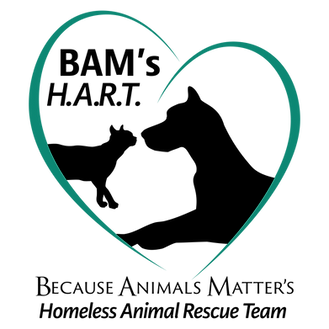 BAM's H.A.R.T. logo