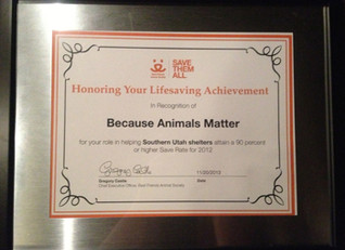 BAM receives honor from Best Friends Animal Society