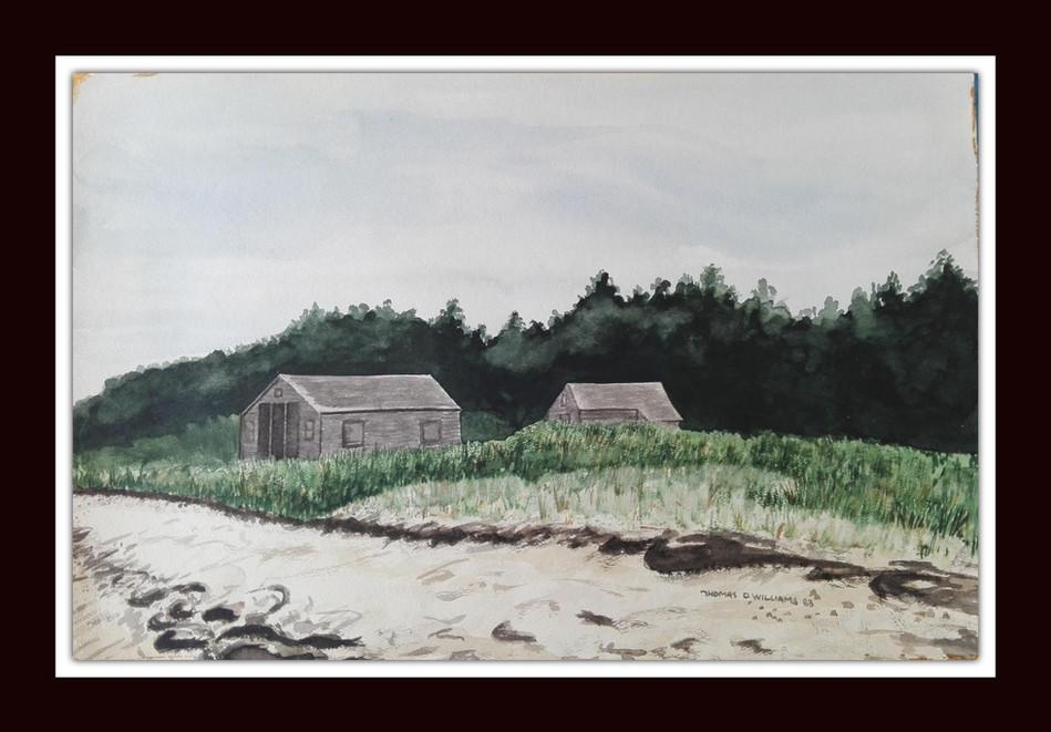 On the Beach by Thomas D. Williams