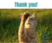 Thank you!.png