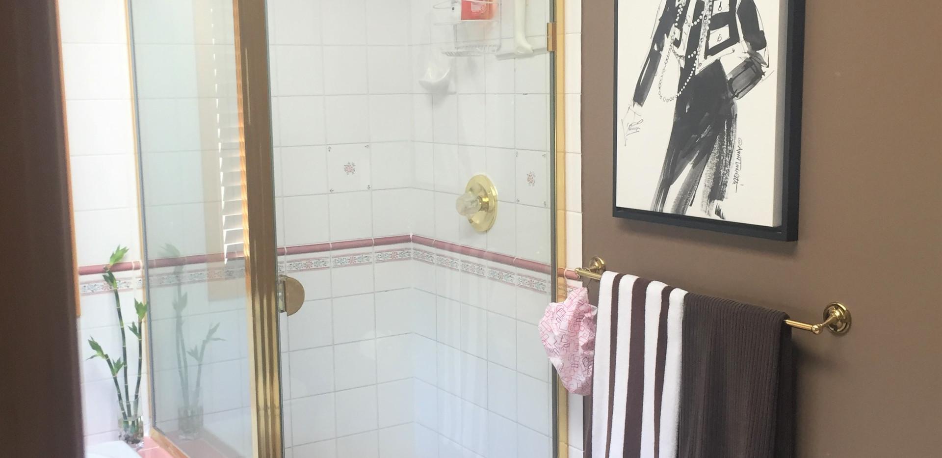 Shower Before 2