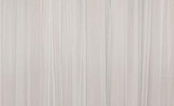 Light Gray Backdrop