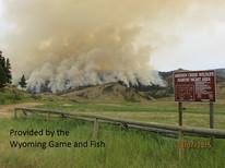 Sheep creek fire 1.jpg