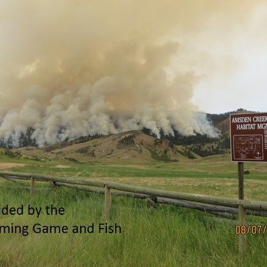 Sheep Creek Fire Porgram